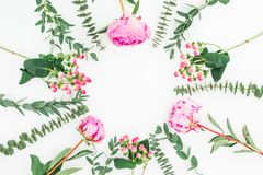 Floral round frame of pink peonies flowers and eucalyptus branches on white background. Flat lay, top view royalty free stock photo