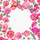 Floral round frame with pink roses and eucalyptus isolated on white background, Flat lay, Top view Royalty Free Stock Photos