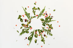 Floral round frame with red berries and yellow-green leaves Stock Photo