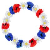 Daisy and Red and Blue Poppy Wreath Isolated on White Background. royalty free illustration
