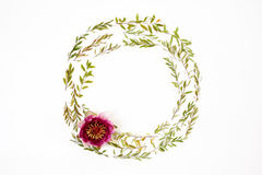 Floral round frame on white background. Flat lay, top view. Stock Photos
