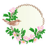 Floral round  frame with wild Roses  and cute small singing bird vintage  festive  background vector Stock Image