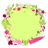 Floral round frame wreath of flowers, Spring summer natural design with leaves and flowers elements for invitation, wedding greeti. Ng cards. green burgundy pink Royalty Free Stock Images