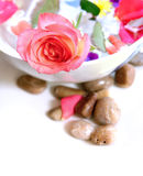 Floral scented water with floating petals Stock Photo