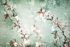 Floral scratched background Royalty Free Stock Photography