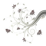 Floral scroll Stock Photography