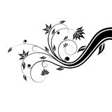 Floral scroll Royalty Free Stock Photo