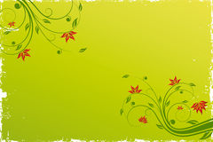 Floral scroll background Royalty Free Stock Photos