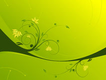 Floral scroll background Royalty Free Stock Photography