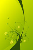 Floral scroll background Stock Photos