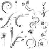 Floral scroll elements. Set of 13 scrolling style floral elements isolated on white Royalty Free Stock Images