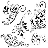 Floral Scroll Ornaments Stock Images