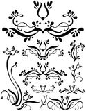 Floral Scroll Set Stock Images