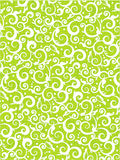 Floral scrolls pattern green background Stock Photography