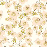 Floral seamles pattern Royalty Free Stock Image