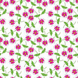 Floral seamles pattern Royalty Free Stock Photography