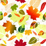 Floral seamless autumn pattern. Floral seamless pattern of colorful leaves Stock Photography