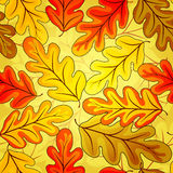 Floral seamless  autumn`s pattern Royalty Free Stock Photos
