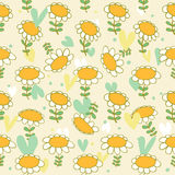 Floral seamless baby pattern  Camomiles delicate t Royalty Free Stock Images