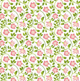 Floral seamless background. Stock Photos