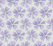 Floral seamless background. Seamless pattern background with white gentle flowers Royalty Free Stock Images