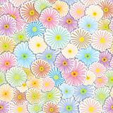 Floral seamless background. With colorful flower, element for design, vector illustration Royalty Free Stock Photo