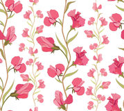Floral seamless background. Abstract ornament geometric texture. Royalty Free Stock Photos