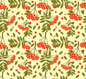 Floral seamless background with autumn leaf and rowan. Retro seamless pattern Stock Photography