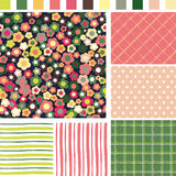 Floral Seamless background. Check Strip Dot Seamless pattern. Se Royalty Free Stock Images