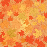 Floral seamless background. Fall wallpaper. Stock Photo