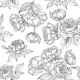 Floral seamless background. flower pattern. Flourish wallpaper Royalty Free Stock Images