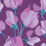 Floral seamless background from  flowers Stock Photography