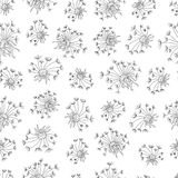 Floral seamless background with flowers of dandelion. Floral black-white seamless background with flowers and leaves of dandelion Royalty Free Stock Photos
