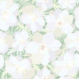 Floral seamless background. flowers pattern. Stock Photo