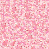 Floral seamless background. gentle flower pattern. Stock Photos
