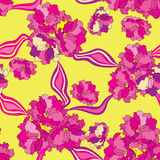 Floral seamless background. gentle flower roses pattern. Royalty Free Stock Photography