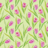 Floral seamless background. gentle flower tulip pattern. Stock Photos