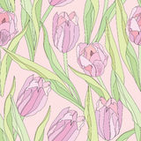 Floral seamless background. gentle flower tulip pattern. Royalty Free Stock Photos