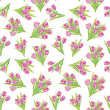 Floral seamless background. gentle flower tulip pattern. Stock Photography