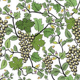 Floral seamless background with grape branch. Decorative flower Royalty Free Stock Photos