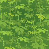 Floral seamless background. Nature green leaf  texture. Stock Photos