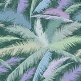 Floral seamless background. Palm leaves nature green texture. Royalty Free Stock Photography