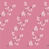 Floral seamless background, pink flower, grey branch on pink. Vector illustration Stock Images