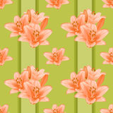Floral seamless background. Royalty Free Stock Photos