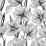 Floral seamless background. Vector pattern with beautiful peony Royalty Free Stock Photos