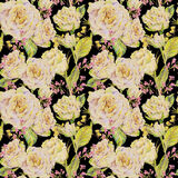 Floral seamless background with white roses Royalty Free Stock Image