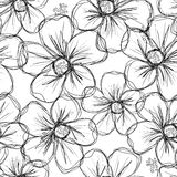 Floral seamless background for your design Royalty Free Stock Photos