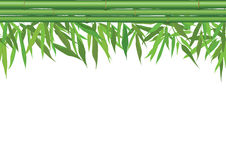 Floral seamless border with bamboo leaves, stem and copy space Stock Image