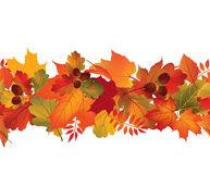 Floral seamless border. Fall decor wallpaper. Stock Photos