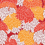 Floral seamless ornament. With chrysanthemum Royalty Free Stock Photography